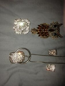 Earrings,and necklace set $40.00and the pins for$ 25.00