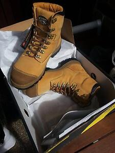 safety boots Oliver & Blue steel brand new, size: 8,  8.5, 9, 9.5 Blakehurst Kogarah Area Preview