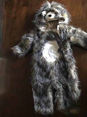 Porcupine Baby Halloween (Pottery Barn Kids Halloween Woodland Baby Hedgehog Costume 12-24)