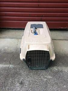 Pet carrier Ashmore Gold Coast City Preview