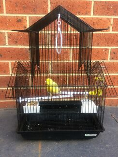 Bird cage with canary & food /Bird cage with 2 budgies