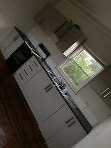 House in Greenacre for rent