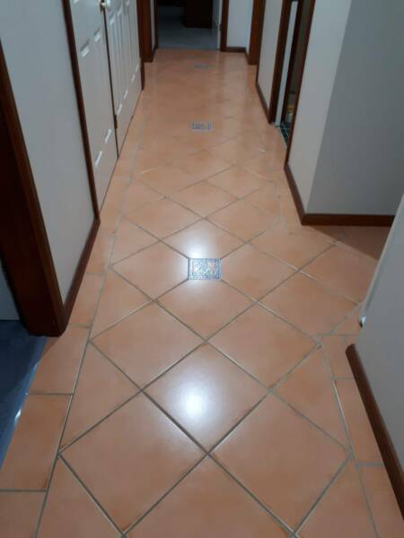 Wanted Terracotta Floor Tiles 330 X 330 Building Materials