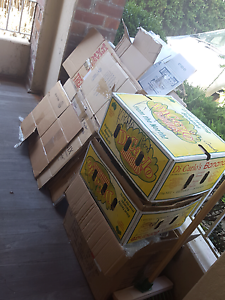 A dozen moving boxes - sml med lge Northcote Darebin Area Preview