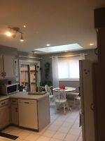 Pro Painter Looking For Jobs In KW