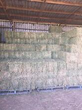 Hay for sale Kalbar Ipswich South Preview