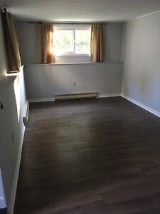 1 bdrm apartment in central Dartmouth