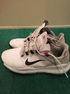 Golf Shoes (Nike TW and Ecco) $50