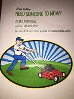 Need someone to mow ??