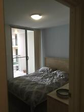 Furnished Double Room in City Apartment~GYM/SAUNA/SPA/POOL!!! East Perth Perth City Preview