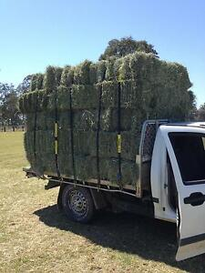 Hay, small squares and large round bales on the Gold Coast Runaway Bay Gold Coast North Preview