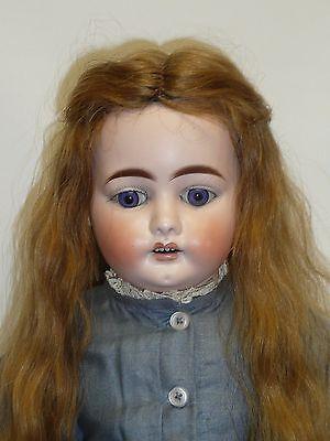 "24"" Antique German Ernst Heubach Bisque Head Doll, Human Hair Wig, Blue Eyes"