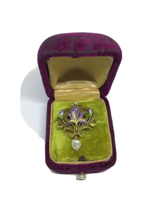 Enchanting Antique Art Nouveau 10 K. Enamel, Pearl , Iris Pin