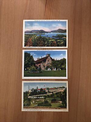 Lot Of Max Rigot Vintage Postcards: Mackinac Island, Palmer Park, Lake George