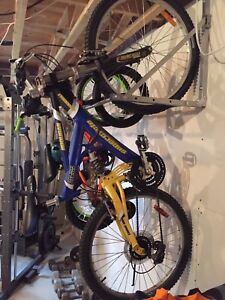 bicycle supercycle