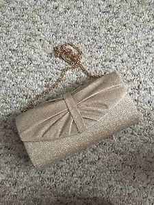Silver/Pink clutch with rose gold chain and silk interior