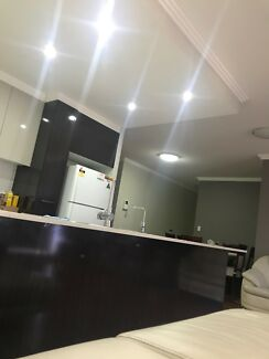 Bachelor Room rent share In parramatta