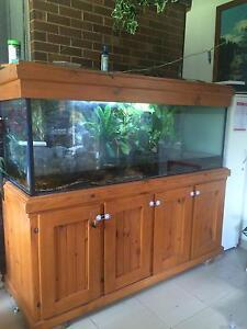 6ft x2ft tank with stand and hood Ashcroft Liverpool Area Preview