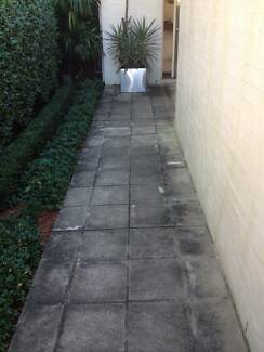 House washing, pressure cleaning business Bulimba Brisbane South East Preview