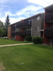 1 Bedroom Unit in Bower across from Bower Mall