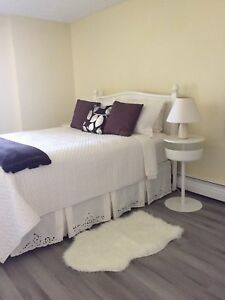Furnished 1 Bdrm condo for Rent South End