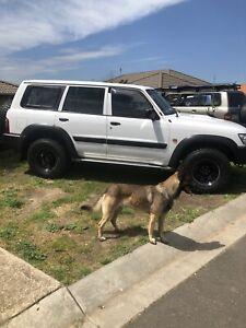Nissan Patrol 2003 3ltTdi