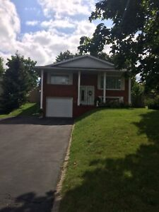 4-bedroom BRICK BUNGALOW in West Galt with parking for 6
