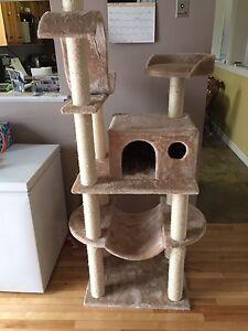 Deluxe Cat Climber