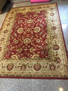 Stunning carpet (5ftx7.5ft) Home Outfitters. Retails for $250.