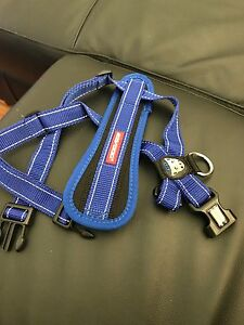 Ezydog Chest Plate Harness Airport West Moonee Valley Preview