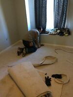 Carpet sales and installation for your basement
