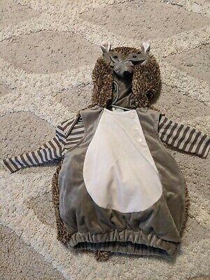 Porcupine Baby Halloween (Baby Hedgehog Halloween Costume Size 0-6 Month Worn Once)