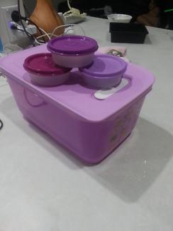 Tupperware bundle purple