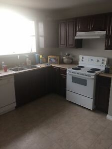 Roommates wanted $475 all included