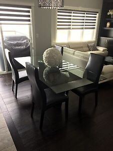 Modern glass and wood dining table set