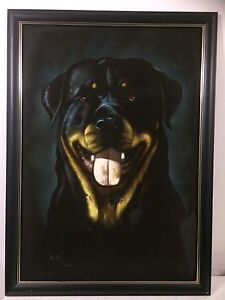 Rottweiler Picture Frame Biggera Waters Gold Coast City Preview
