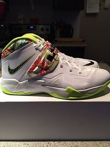 """Nike LeBron Zoom Soldier 7 """"King's Pride"""" Size 12.5 DS"""