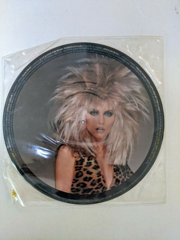 Blondie The Hunter Picture Disc