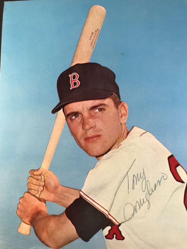 Sports Mem, Cards & Fan Shop Tom Glavine Autographed Signed 8x10 Photo Picture Baseball Braves Beckett Coa Good Taste Baseball-mlb