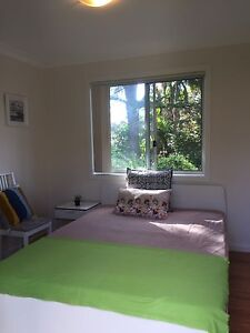 Eastwood 主卧 $250 (incl all bills ) Denistone East Ryde Area Preview