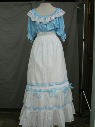 Victorian Dress Edwardian Costume Civil War Style with Hat