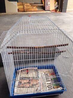 Avione bird cage Ashmore Gold Coast City Preview