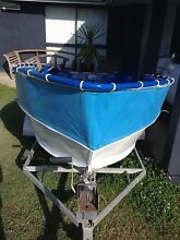 Tinny and trailer Benowa Gold Coast City Preview