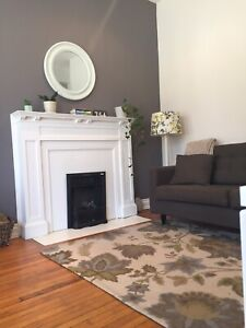 Beautiful Durand Apartment for Summer Sublet