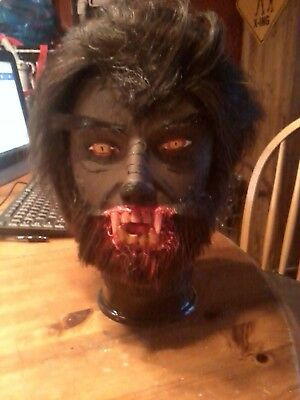 THE WOLFMAN WEREWOLF ZOMBIE HORROR PROP HALLOWEEN PROP MANNEQUIN HEAD.  - Halloween Mannequin Head