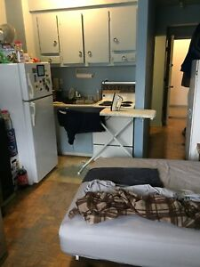 1 &1/2 renovated apartment, mountain view, 312 sqf, McGill Ghett