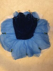 DANCE COSTUMES FOR SALE! London Ontario image 5