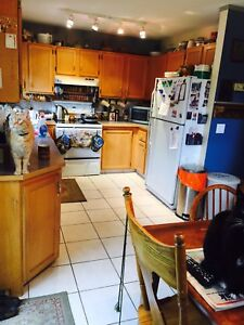 Dec 16 or Jan 1 room for rent in Banff condo