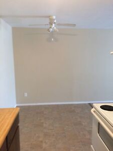 One Bedroom Suite Close to Northern Lights College