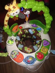 Fisher Price bouncy saucer